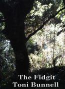 Fidgit cover 2