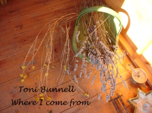 Where I come from CD cover for website
