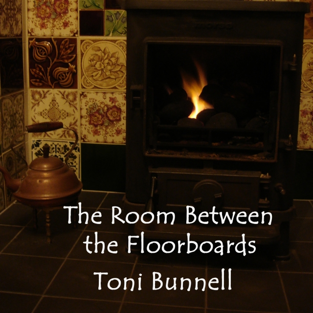 Audiobook released! | Toni Bunnell's Songs, Stories and Music